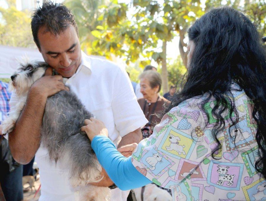Aumenta la esterilización de mascotas en Colima