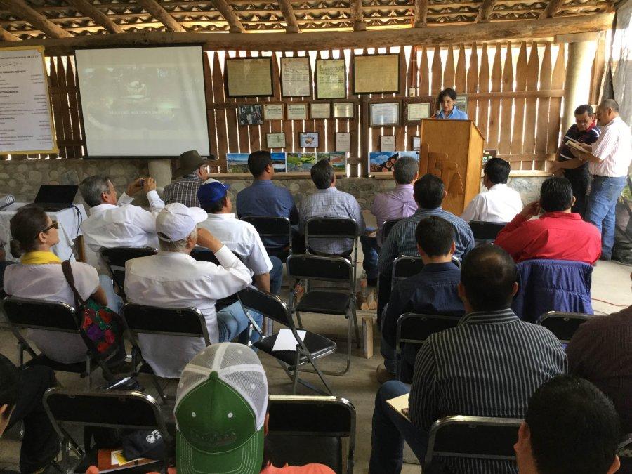 Consolida Tapalpa nuevo esquema de aprovechamiento forestal sustentable