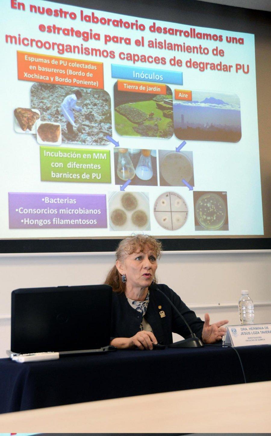 IDENTIFICAN EN LA UNAM MICROORGANISMOS CAPACES DE DEGRADAR POLIURETANO CON MAYOR EFICIENCIA