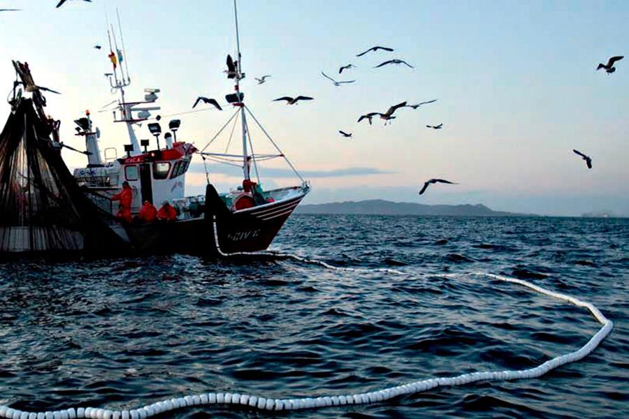 A¿Cuál es la importancia de la sustentabilidad pesquera?