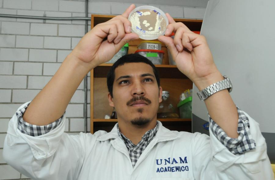 DETECTAN EN LA UNAM COMPUESTOS PARA INHIBIR CÉLULAS CANCERÍGENAS