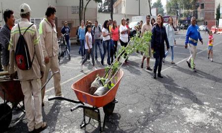Plantan árboles en colonias de MH