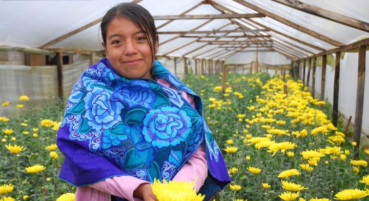Arráigate a las oportunidades productivas para jóvenes del campo mexicano