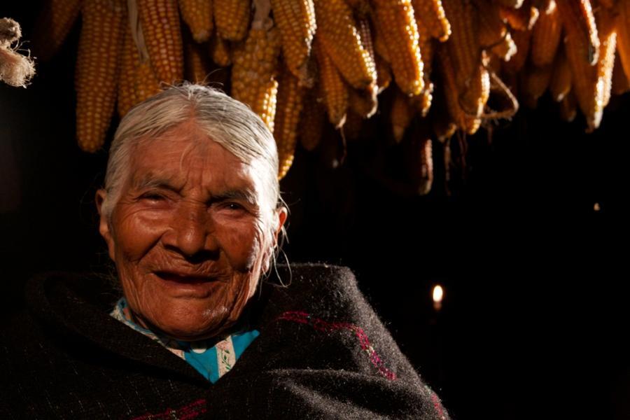 En el Día del Maíz, reconocemos el trabajo de Diconsa, que abastece de este alimento a millones de personas