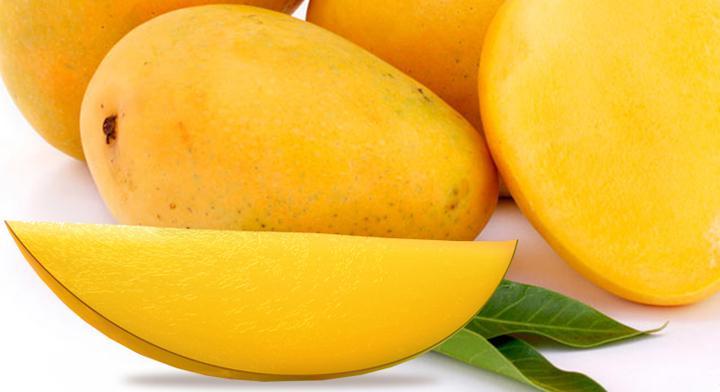 Mango orgánico, un fruto certificado
