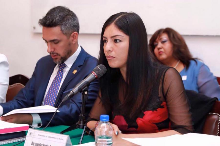 EL PAN RETRIBUIRÁ AL CAMPO EN EL PRESUPUESTO 2017, ADELANTA VALDEZ CUEVAS