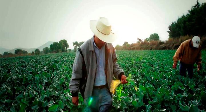 #DíaDeMuertos: Protagonistas del campo mexicano