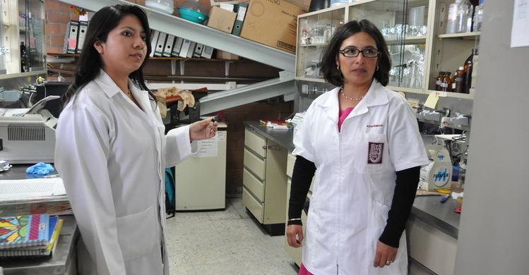 Investiga IPN efectos positivos de la planta de Aranto contra cáncer de mama