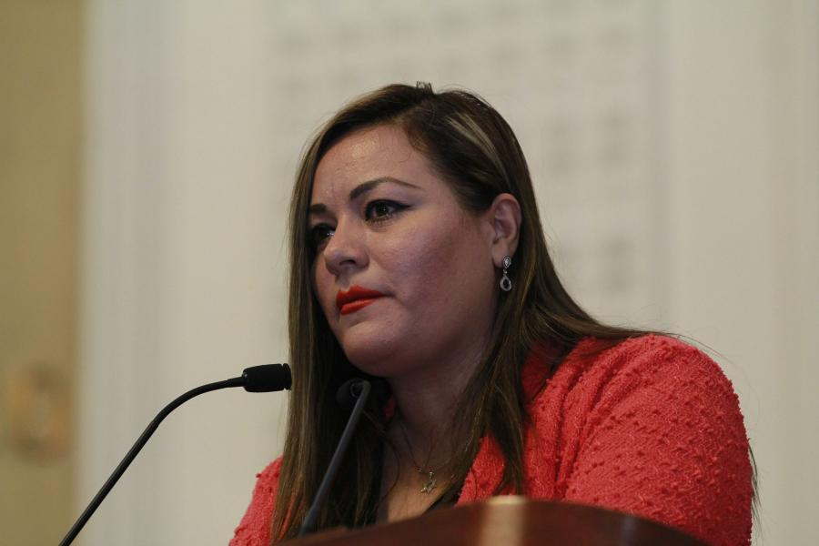 DEMANDA ALDF EVITAR LA VENTA CLANDESTINA DE MICHELADAS Y GOMICHELAS
