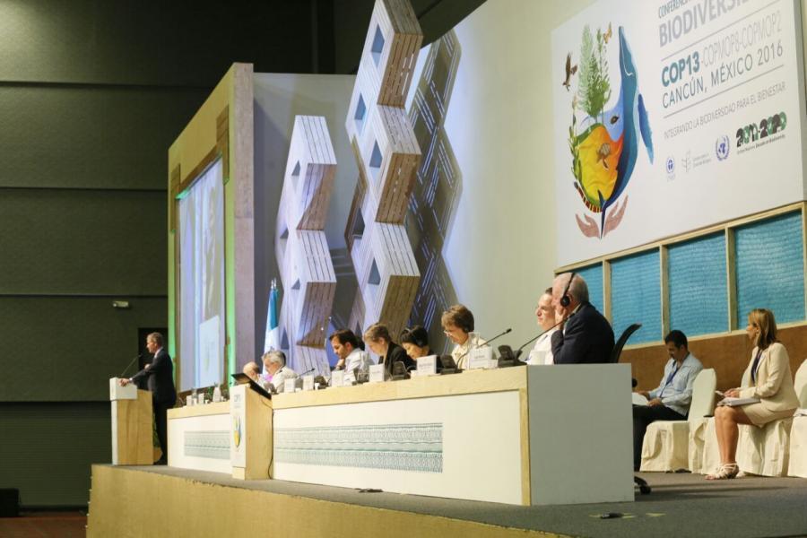 Participó Enrique De La Madrid En El Foro Internacional De La COP13