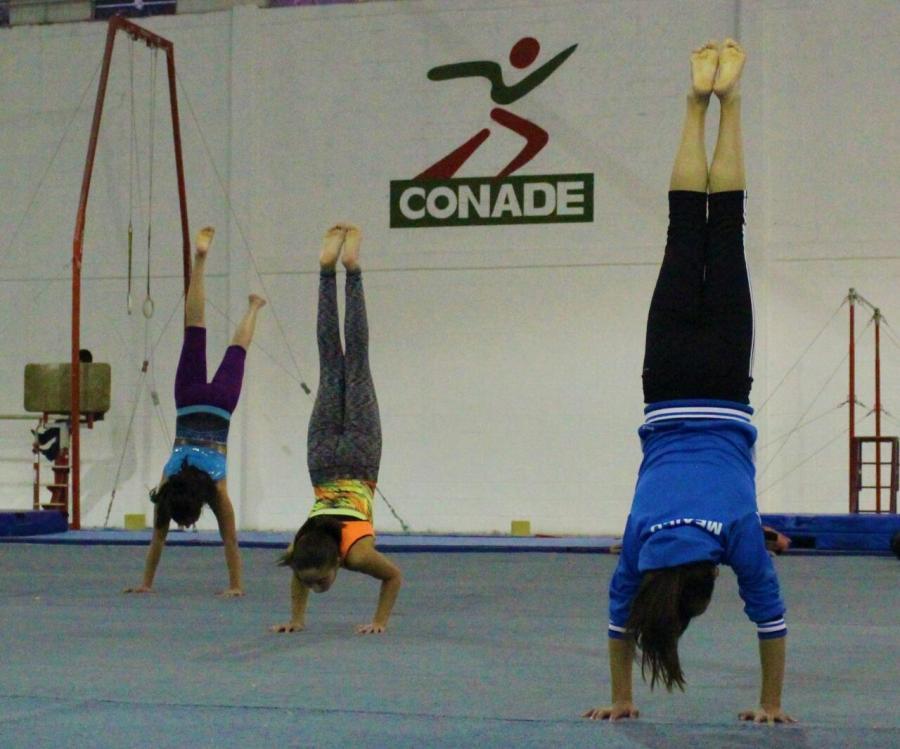 La CONADE semillero de gimnastas