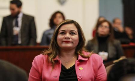 MÉXICO DEBE RECHAZAR EL MURO Y EL IMPUESTO FRONTERIZO QUE PRETENDE IMPONER TRUMP: ELIZABETH MATEOS