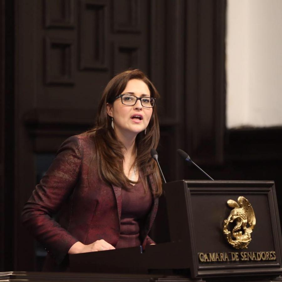 """Urge diputada López Castro reivindicar en nueva Constitución,  """"Derecho a la Ciudad"""""""