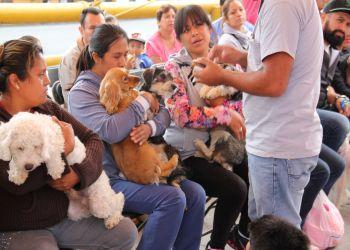 CONVOCA LA DELEGACIÓN IZTAPALAPA A LA CUARTA ETAPA DE LA CAMPAÑA DE ESTERILIZACIÓN ANIMALÍZATE