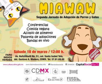 Perros y gatos protagonizan el MiaWaw Fest en el Faro Indios Verdes