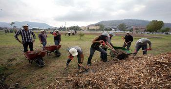 Reforesta IPN zona deportiva de Ticomán