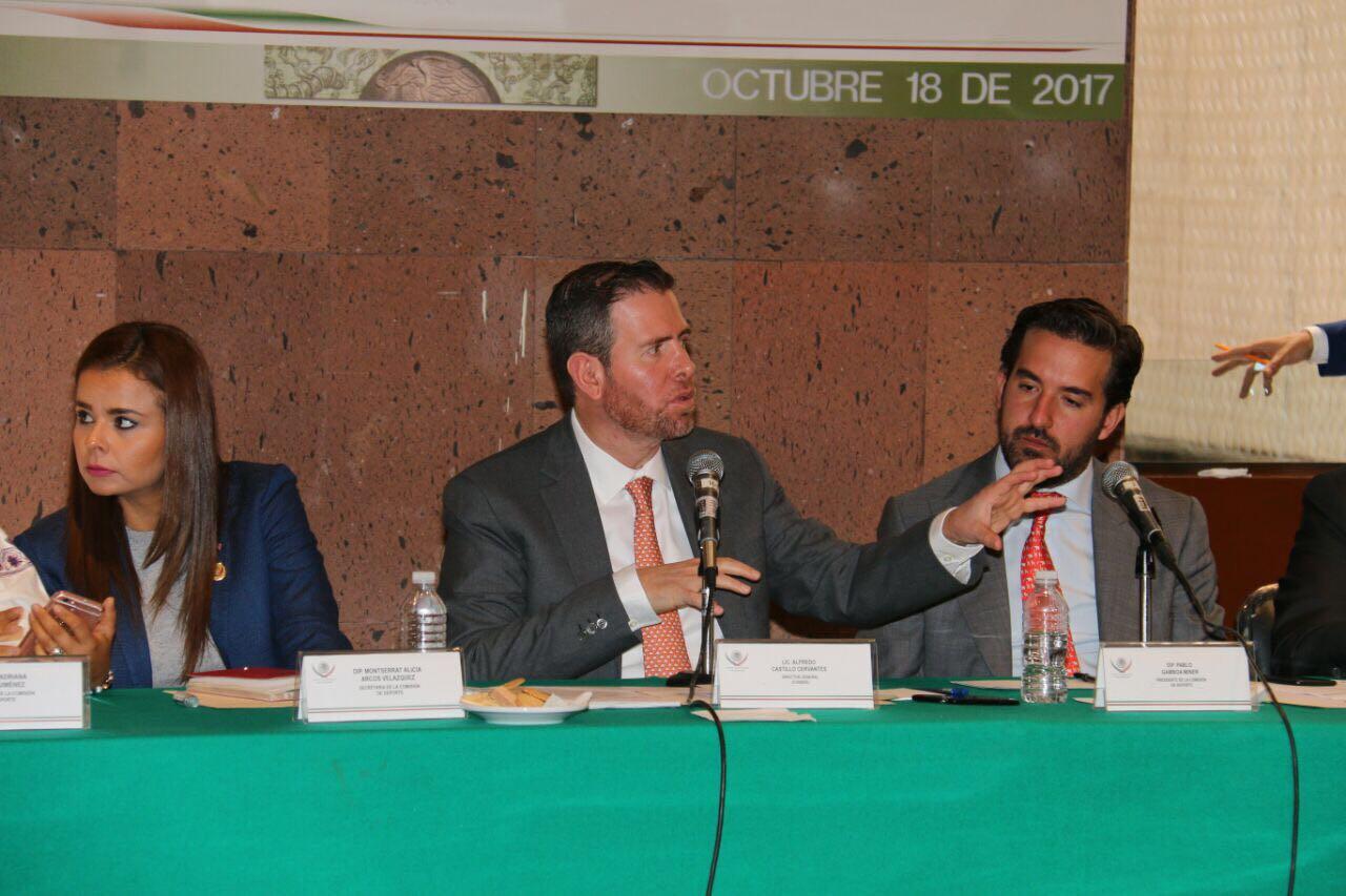 La CONADE es un órgano rector y no ejecutor: Alfredo Castillo