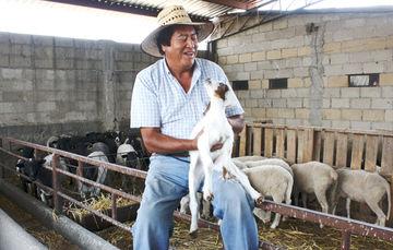 La caprinocultura en México