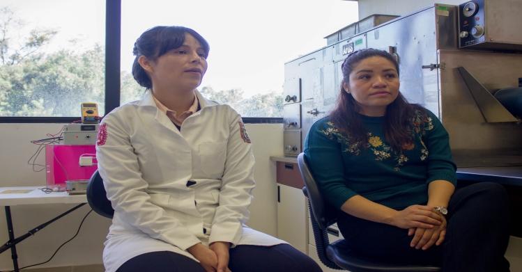 Trabaja IPN con chía para microencapsular enzimas de importancia alimentaria