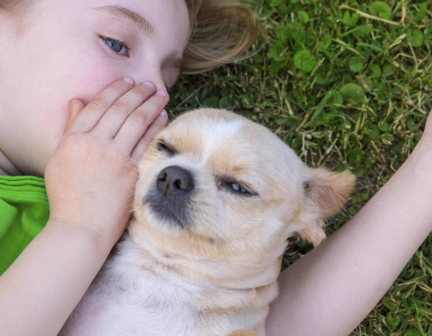 RESPONSABILIDAD Y CUIDADOS, FACTORES A TOMARSE EN CUENTA ANTES DE REGALAR UN ANIMAL DE COMPAÑÍA