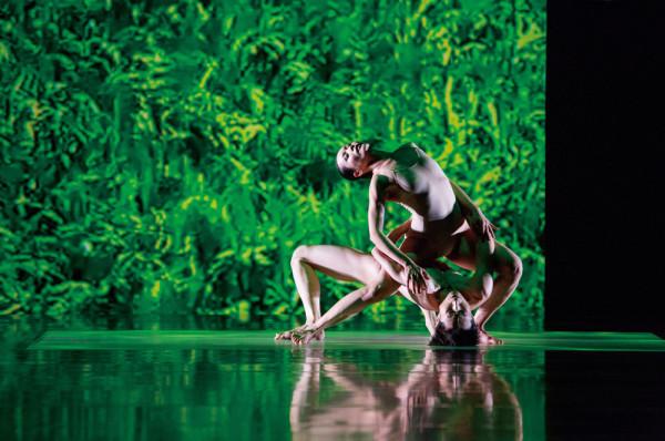 La compañía Cloud Gate Dance Theatre se presentará por primera vez en el Palacio de Bellas Artes