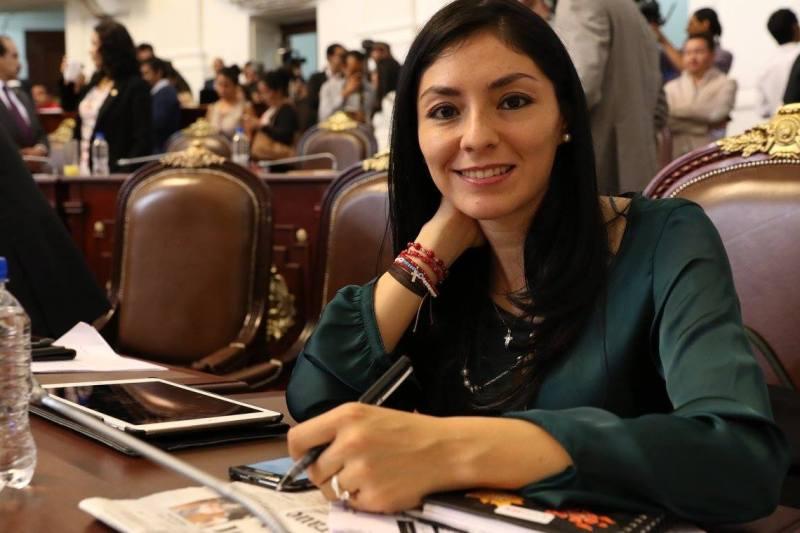 Instan a empresarios locales de Tlalpan para apoyar a los albergues de la zona de hospitales en San Fernando