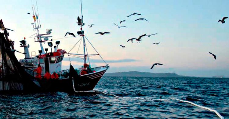 Impulso a la sustentabilidad con la organización del sector pesquero