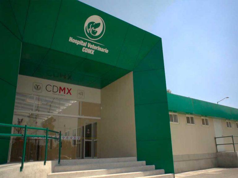 Hospital Veterinario de la Ciudad de México, a dos años de entrar en funciones