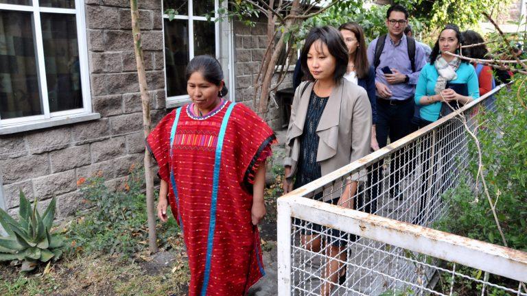 Visitan expertos de naciones unidas comunidades indígenas en CDMX