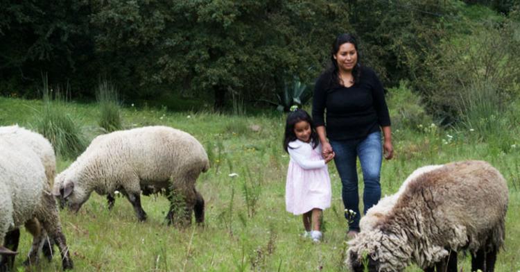 Ahora es el momento: Las activistas rurales y urbanas transforman la vida de las mujeres