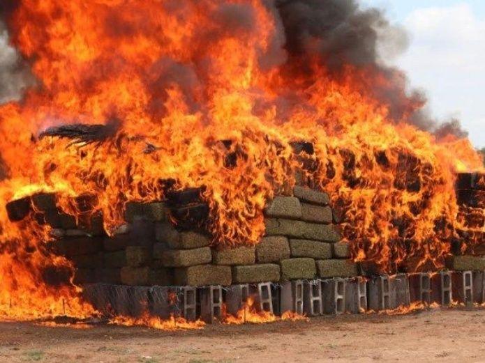 Incinera PGR más de 9 toneladas de narcóticos en Jalisco