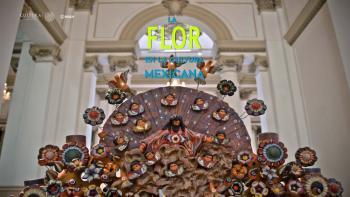 Diversidad en la oferta artística y cultural ofrece la Secretaría de Cultura en el periodo vacacional