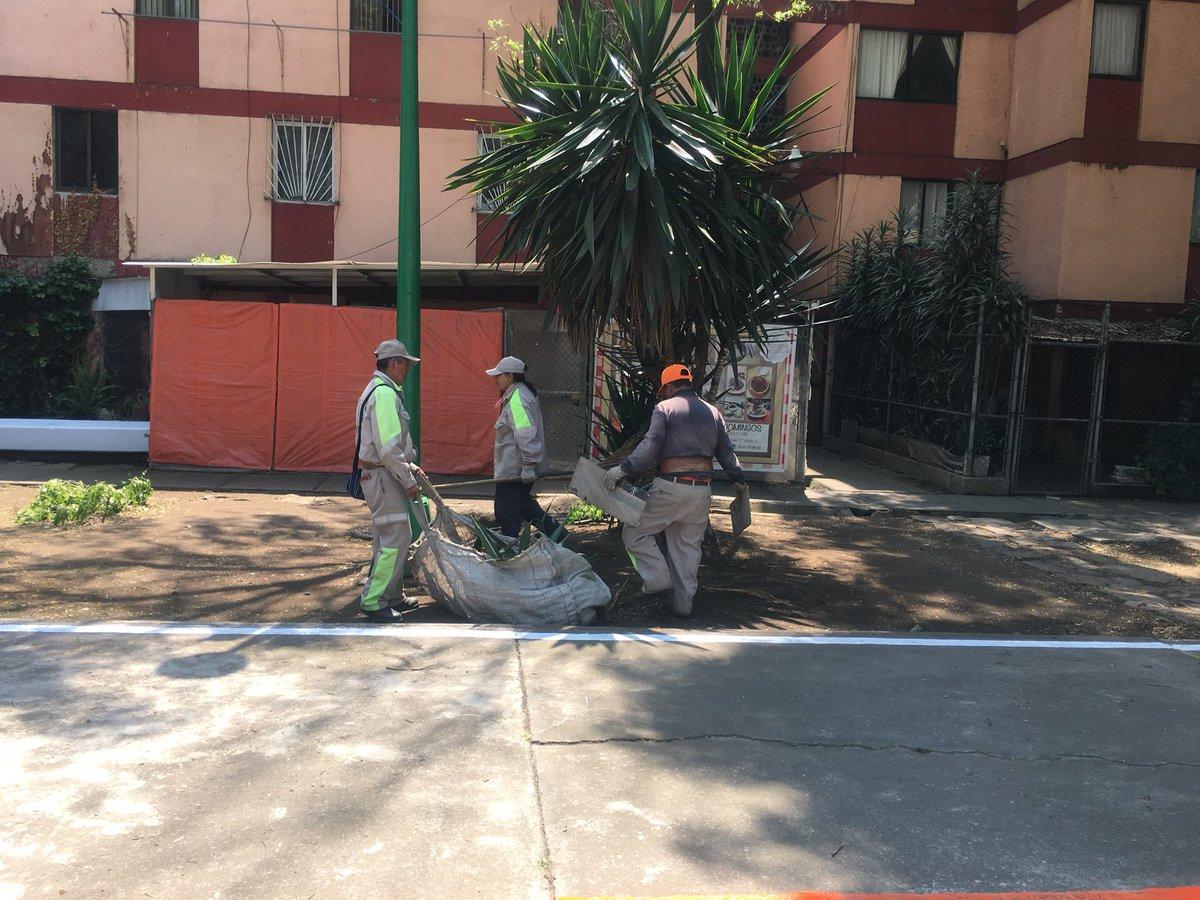 Realiza gam mega jornada de mantenimiento a parques y jardines ntcd noticias - Mega jardines de olarizu ...