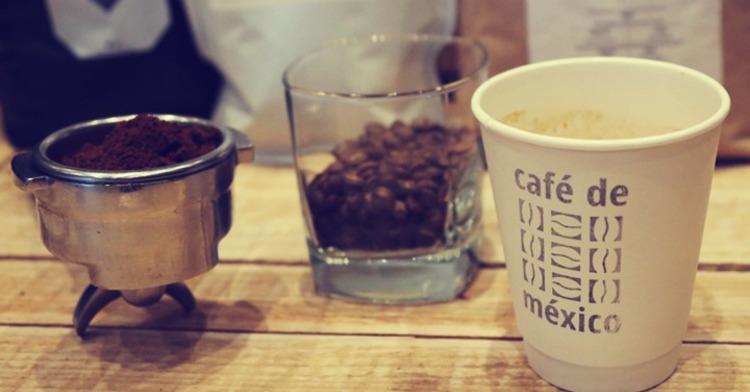 Descubre cómo catar tu café