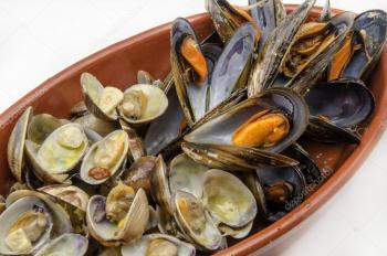 Canadá abre su mercado comercial a la exportación de moluscos bivalvos mexicanos: Cofepris