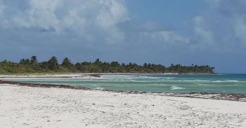IPN contará con un observatorio de cambio climático en Quintana Roo
