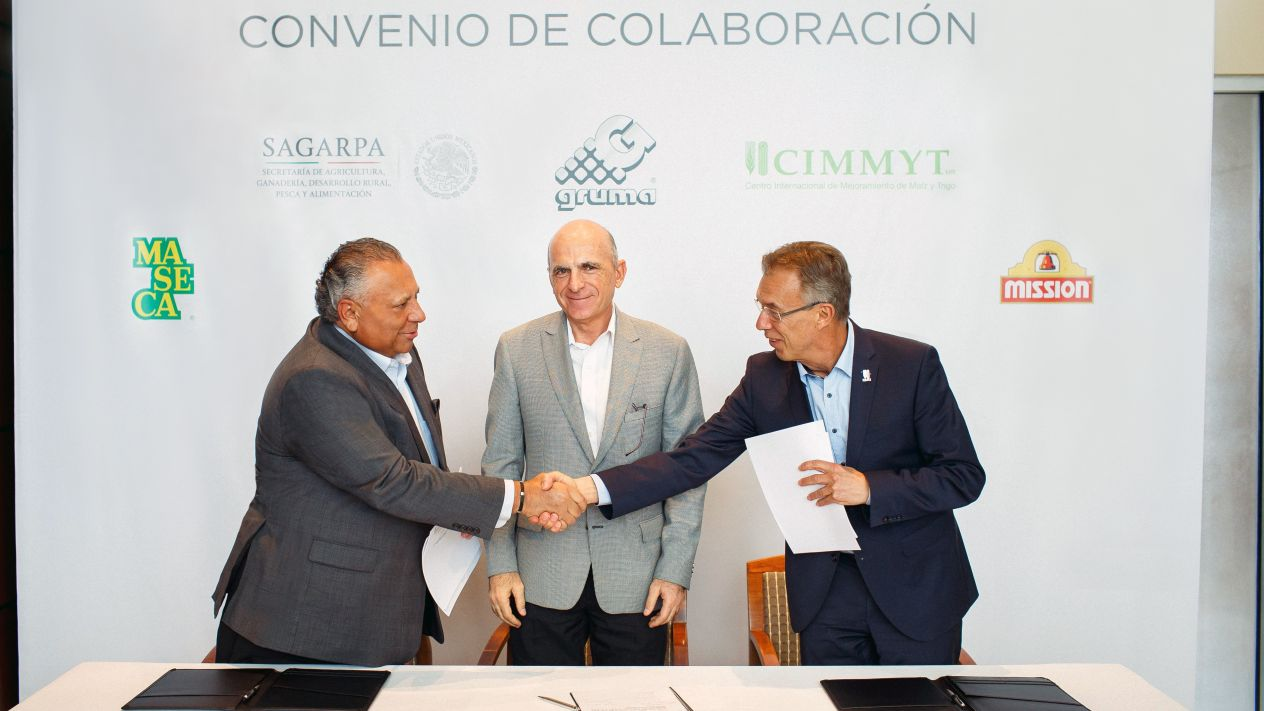 Firman Gruma y CIMMYT acuerdo para potenciar la productividad del campo en México