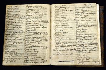 Analizan documentos antiguos sobre pueblos originarios en mesa de etnohistoridores