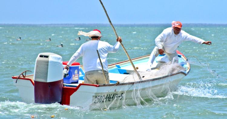 Estrategias de combate contra pesca ilegal