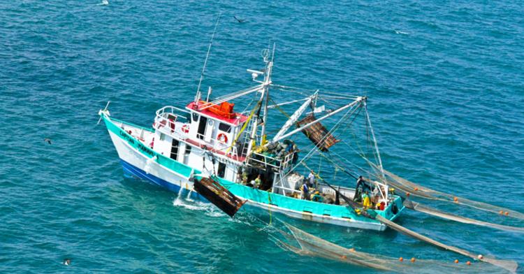 Tecnología y pesca, un equipo muy exitoso