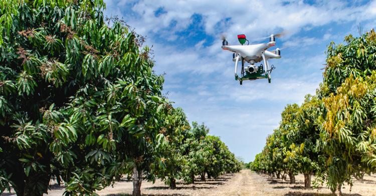 Sanidad agroalimentaria protegida con tecnología