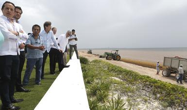 Instalan mesa de trabajo permanente para atender arribazón de sargazo en las playas de Quintana Roo