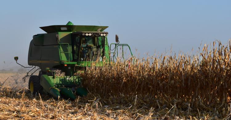 El sector agropecuario espacio de aprovechamiento y transformación