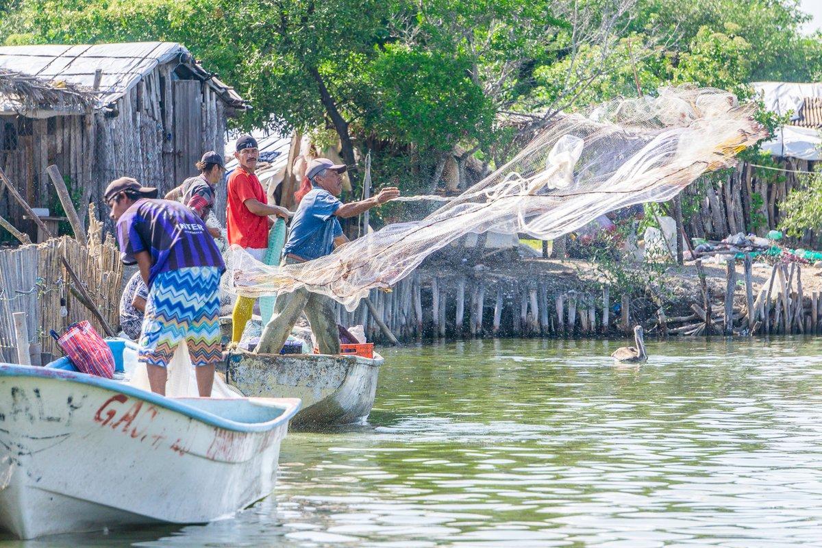 Apoya CONAPESCA a más de 31 mil pescadores del país a través del PROPESCA