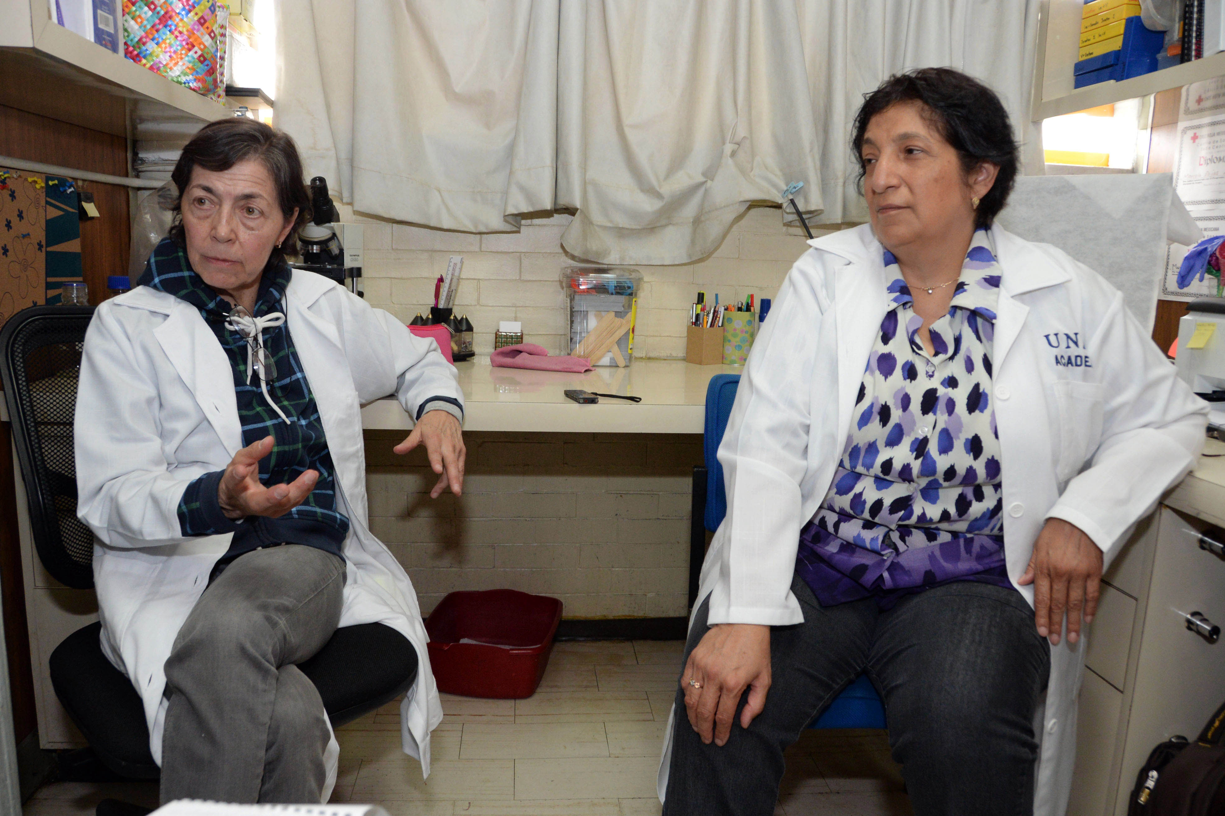 LA CONTAMINACIÓN DEL AIRE PUEDE INCIDIR EN PROBLEMAS DE REPRODUCCIÓN: ACADÉMICAS DE LA UNAM