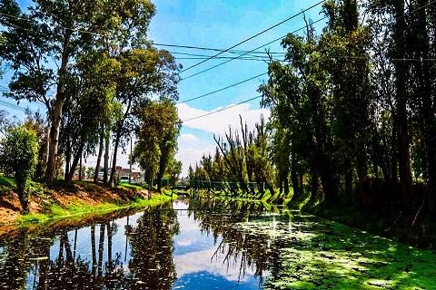 LABORES DE LIMPIEZA EN CANALES DE RIEGO, FACILITAN ACTIVIDAD AGRÍCOLA