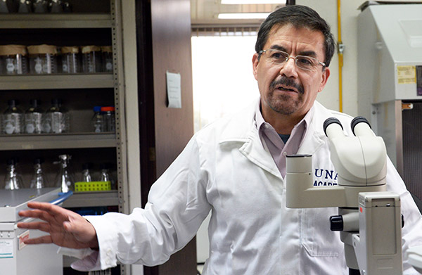 Alto consumo de azúcares reduce fertilidad hasta en 50%: especialista de la UNAM