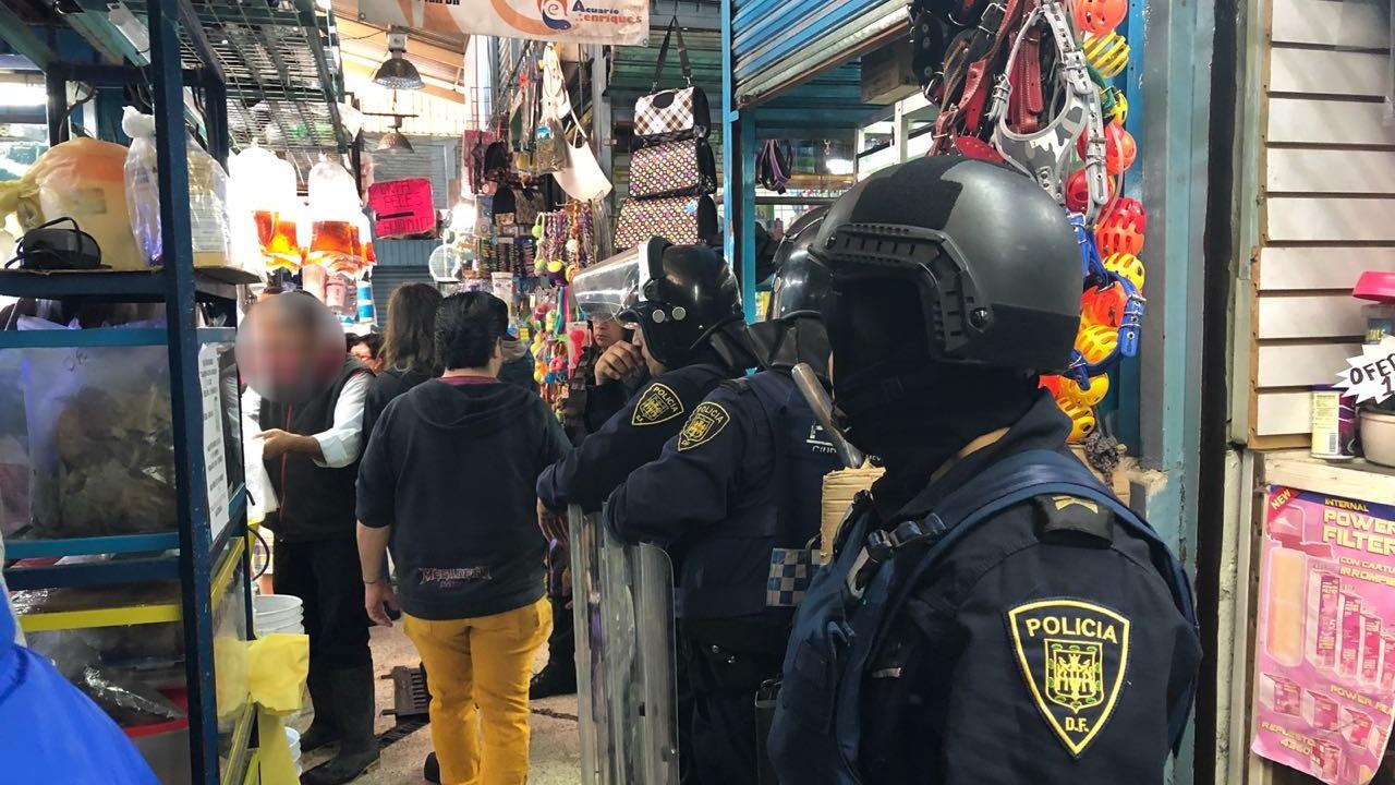 Decomisan reptiles y tortugas en mercado Morelos