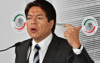Para abajo la reforma educativa: Mario Delgado