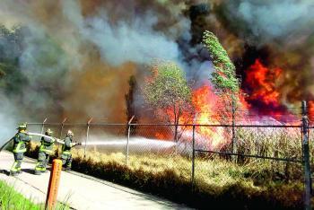 Cerca de 40 hectáreas afectadas por incendio en Xochimilco